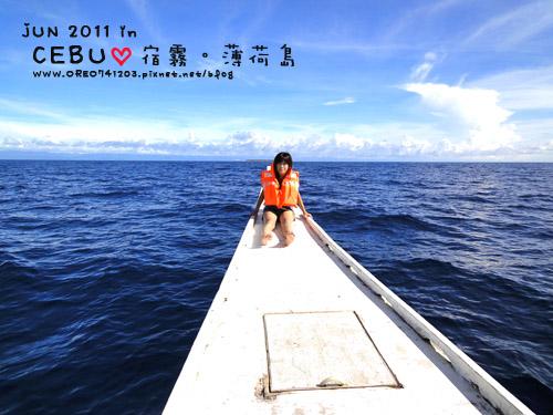 看海豚4.jpg