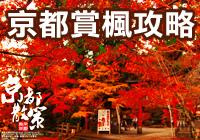 京都賞楓.jpg