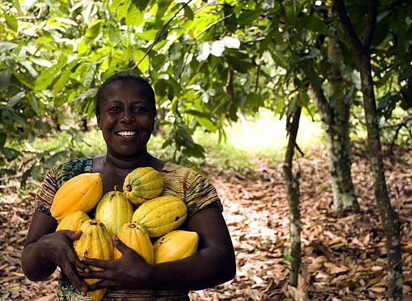 fruit-3247447_1920.jpg