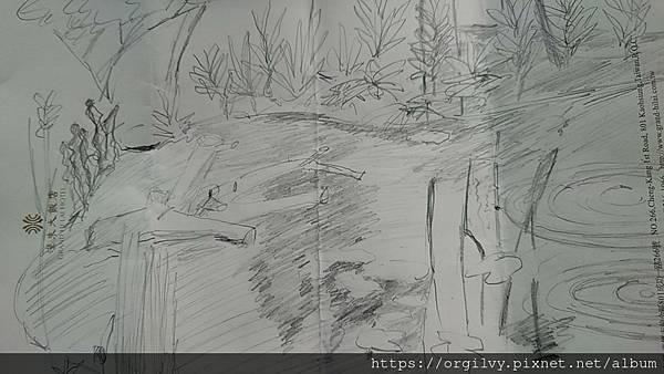 莫內蓮花池 過程 44691