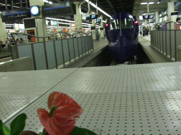 大阪關西機場的Rapi.T列車