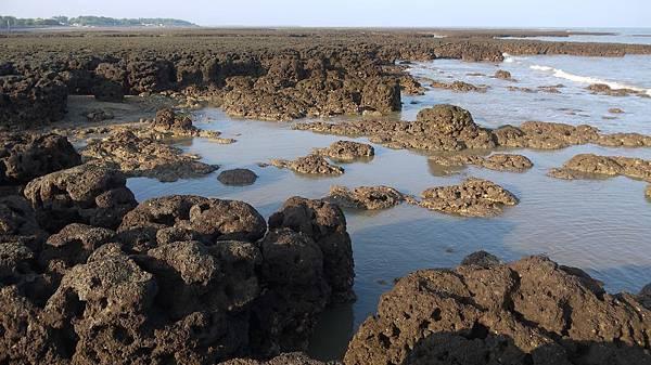 觀新藻礁.jpg