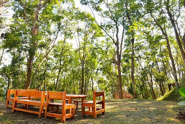 在楠木、油桐所環抱的森林中,享受一客悠閒的早餐或午茶.jpg