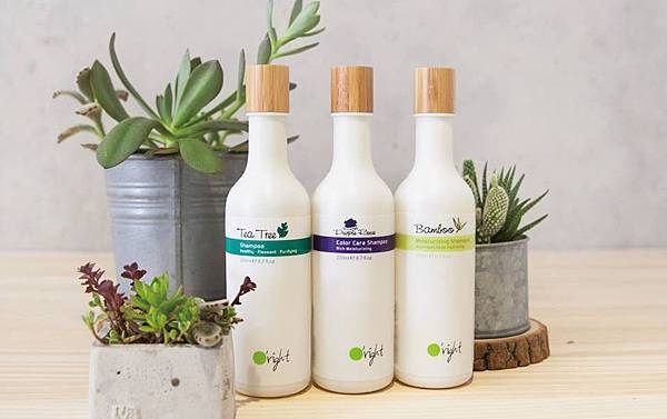 歐萊德100%再生塑膠瓶洗髮精1.jpg