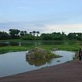 蘭陽博物館後景