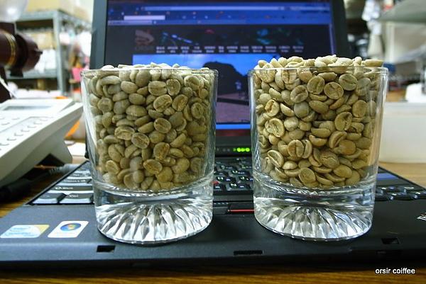 精品生豆與商業生豆的對照