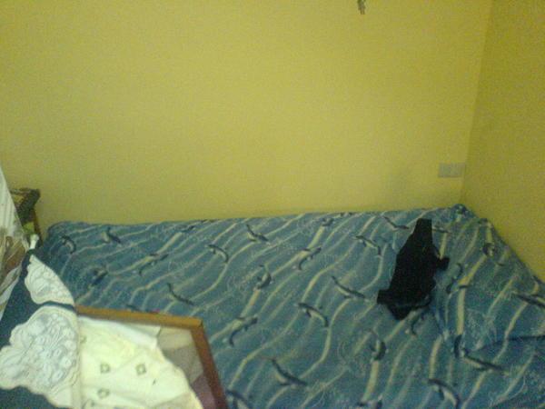 偉琪的床~~