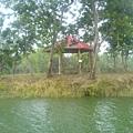 湖中的猴子園~~