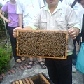 到處都有養蜂人家~~