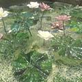 玻璃蓮花~