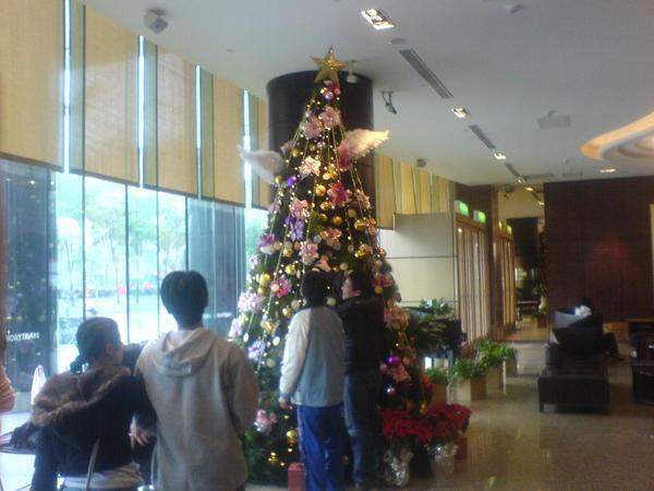 錢櫃的聖誕樹
