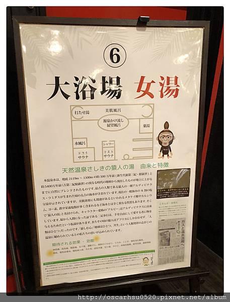 S__16826453_副本.jpg