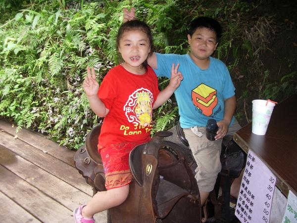 我妹妹在騎假的馬
