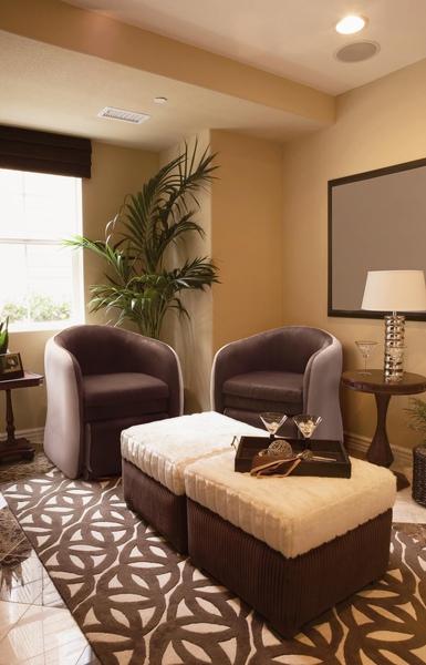 Brown Twin Livingroom.JPG