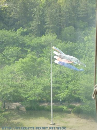 第一面鯉魚旗