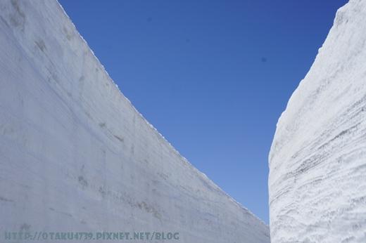 室堂站-雪牆8