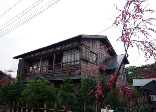 林口霧社街-櫻旅館