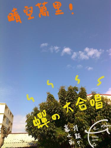 超好的天氣