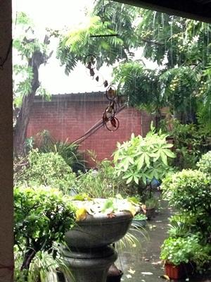 風雨中的庭院