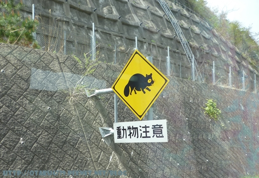 動物注意.JPG
