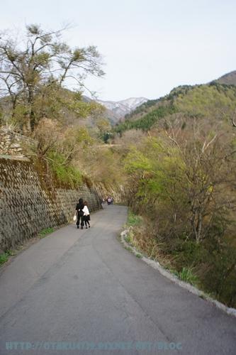 白川鄉合掌村-往觀景台之路3
