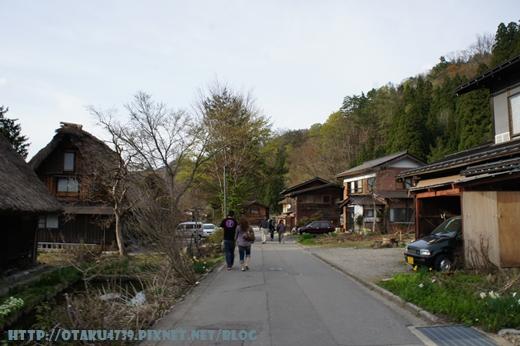 白川鄉合掌村-街道3