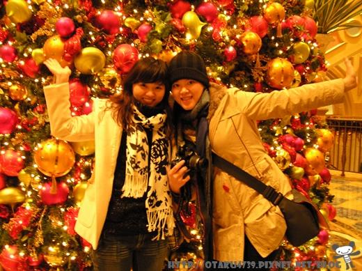 威尼斯人-超大聖誕樹