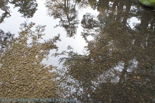 兼六園-清澈的水3