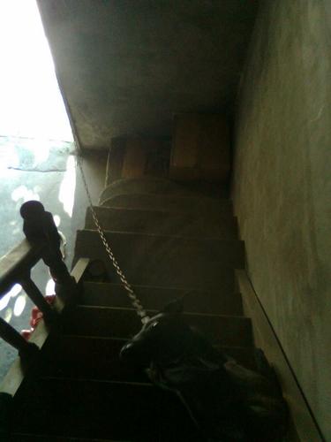 樓梯上的阿統