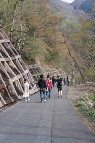 白川鄉合掌村-往觀景台之路2