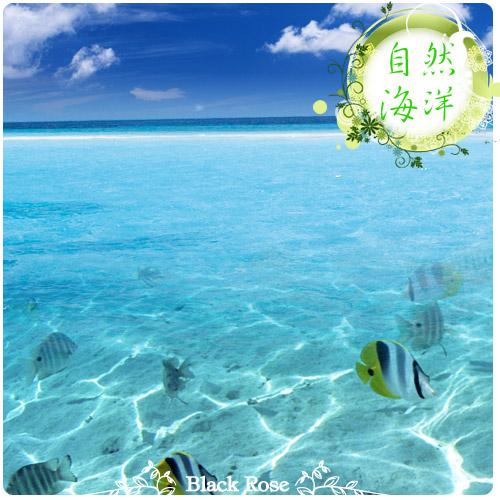 描述: http://buy.yahoo.com.tw/res/gdsale/st_pic/3700/st-3700106-3.jpg?u=20120801112812