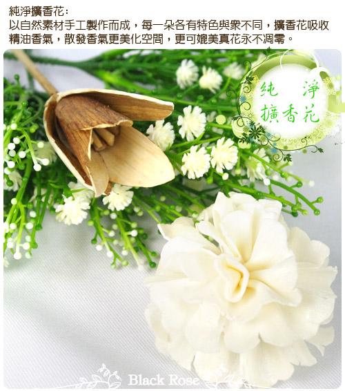 描述: http://buy.yahoo.com.tw/res/gdsale/st_pic/3700/st-3700106-5.jpg?u=20120801112812