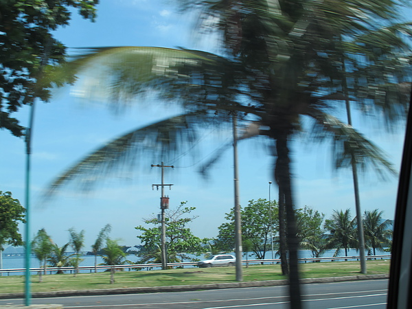 巴西之旅 148.jpg