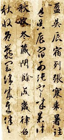 zhiyongzhencaoqzw_02