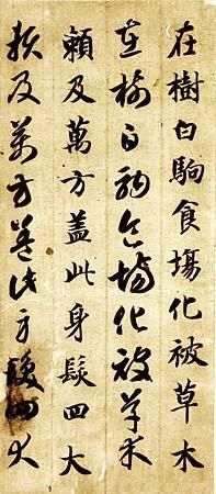 zhiyongzhencaoqzw_08
