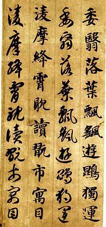zhiyongzhencaoqzw_40