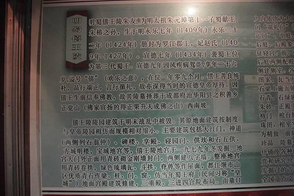 DSC07594