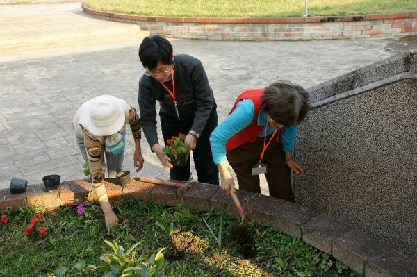 環境改造-大家一起種鳳仙花