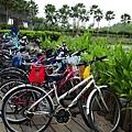今天我們騎單車,很環保、很優閒、很運動
