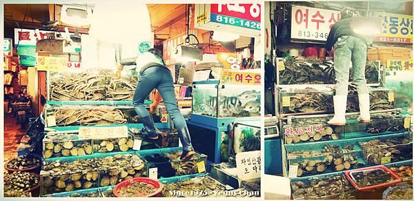 PhotoCap_010_副本