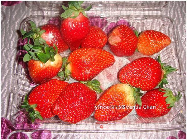 w7600草莓