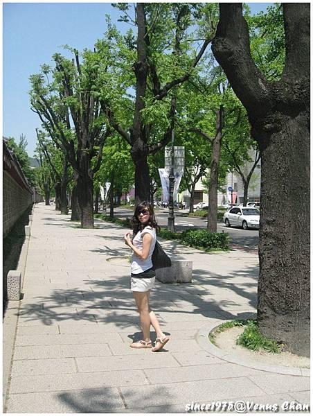 PhotoCap_105.jpg