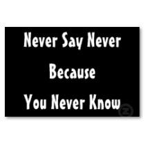 never_say_never_poster-p228078324838347996tdar_210.jpg