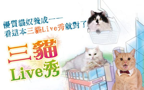 threecats1.jpg