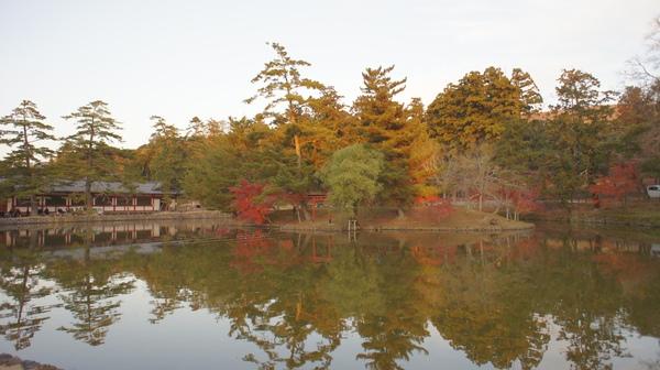 東大寺前.JPG