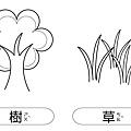 線條圖卡-樹+草.jpg