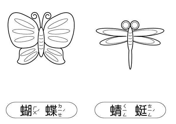 線條圖卡-蝴蝶+蜻蜓.jpg