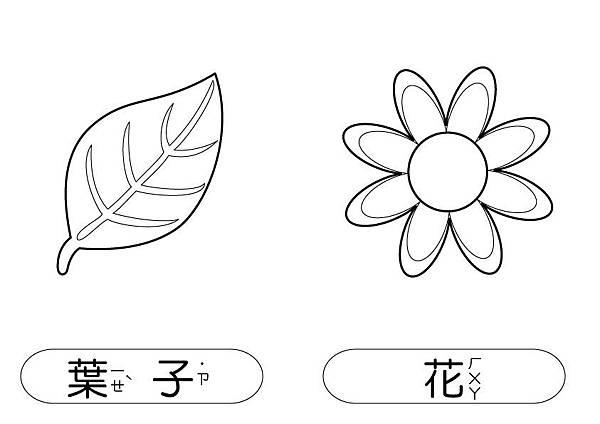 線條圖卡-葉+花.jpg