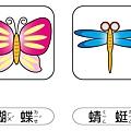 彩色圖卡-蝴蝶+蜻蜓.jpg