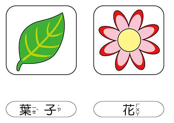 彩色圖卡-葉+花.jpg